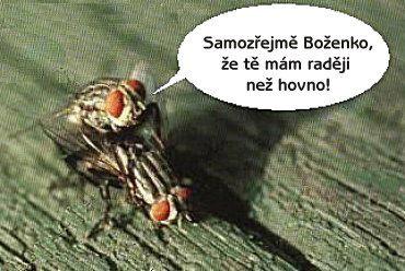 http://humor.sms.cz/kategorie/humor/obrazky/obrazky/1vyznani.jpg