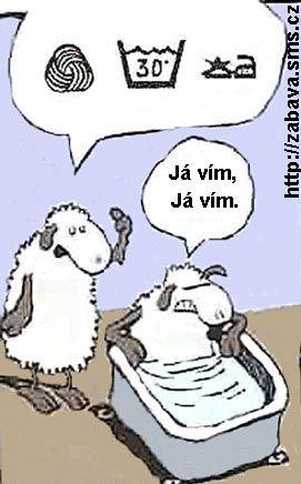 http://humor.sms.cz/kategorie/humor/obrazky/obrazky/ze129.jpg